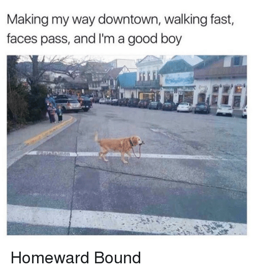 Good, Boy, and Downtown: Making my way downtown, walking fast,  faces pass, and I'm a good boy  mon Homeward Bound