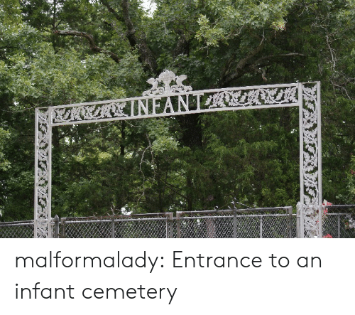 Tumblr, Blog, and Http: malformalady: Entrance to an infant cemetery