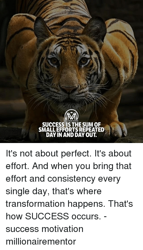 Memes, Consistency, and Success: MALIONAIRE MENTOR  SUCCESS IS THE SUM OF  SMALL EFFORTS REPEATED  DAY IN AND DAY OUT. It's not about perfect. It's about effort. And when you bring that effort and consistency every single day, that's where transformation happens. That's how SUCCESS occurs. - success motivation millionairementor