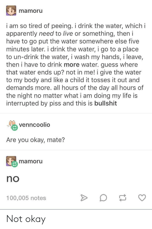 This Is Bullshit: mamoru  i am so tired of peeing. i drink the water, which i  apparently need to live or something, then i  have to go put the water somewhere else five  minutes later. i drink the water, i go to a place  to un-drink the water, i wash my hands, i leave,  then i have to drink more water. guess where  that water ends up? not in me! i give the water  to my body and like a child it tosses it out and  demands more. all hours of the day all hours of  the night no matter what i am doing my life is  interrupted by piss and this is bullshit  venncoolio  Are you okay, mate?  mamoru  no  100,005 notes Not okay