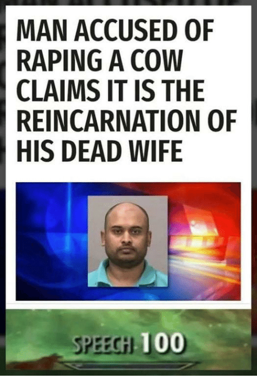 Anaconda, Wife, and Reincarnation: MAN ACCUSED OF  RAPING A COW  CLAIMS IT IS THE  REINCARNATION OF  HIS DEAD WIFE  SPEEGH  100