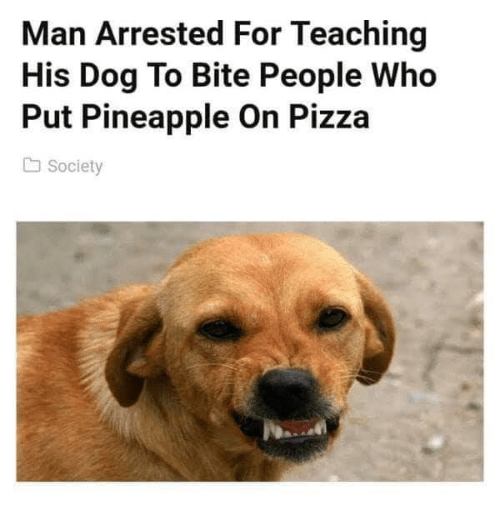Pizza, Pineapple, and Teaching: Man Arrested For Teaching  His Dog To Bite People Who  Put Pineapple On Pizza  Society