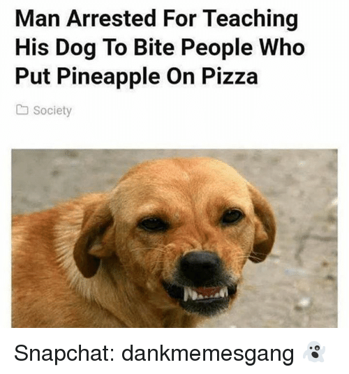 Memes, Pizza, and Snapchat: Man Arrested For Teaching  His Dog To Bite People Who  Put Pineapple On Pizza  a Society Snapchat: dankmemesgang 👻