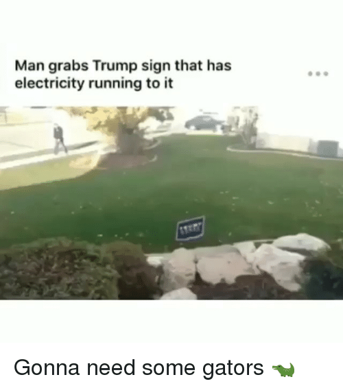 Memes, Trump, and Running: Man grabs Trump sign that has  electricity running to it Gonna need some gators 🐊