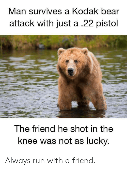 Dank, Run, and Bear: Man  survives a Kodak bear  attack with just a .22 pistol  The friend he shot in the  knee was not as lucky Always run with a friend.