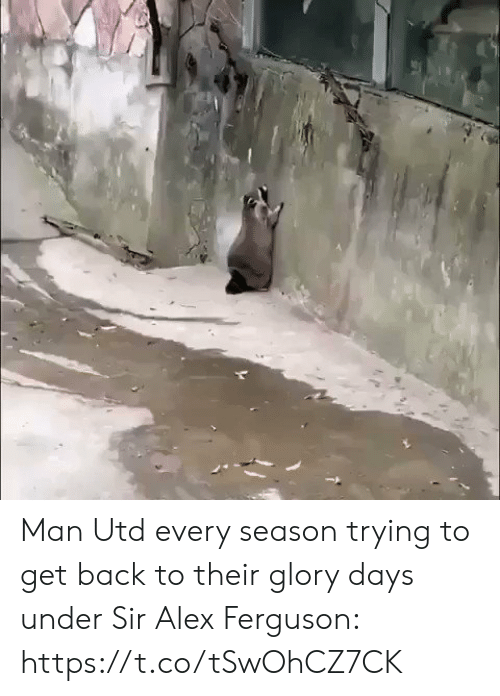 glory: Man Utd every season trying to get back to their glory days under Sir Alex Ferguson: https://t.co/tSwOhCZ7CK