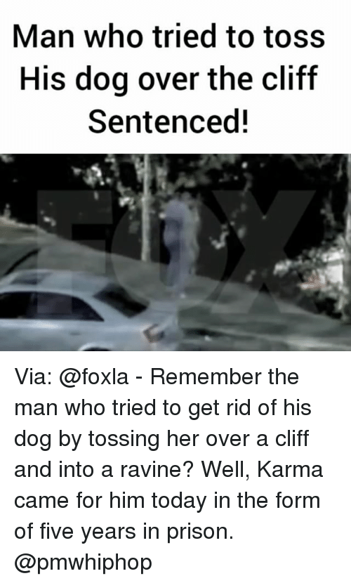 Memes, Prison, and Karma: Man who tried to toss  His dog over the cliff  Sentenced! Via: @foxla - Remember the man who tried to get rid of his dog by tossing her over a cliff and into a ravine? Well, Karma came for him today in the form of five years in prison. @pmwhiphop