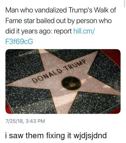 Memes, Saw, and Star: Man who vandalized Trump's Walk of  Fame star bailed out by person who  did it years ago: report hill.cm,/  F3f69cG  7/25/18, 3:43 PM i saw them fixing it wjdjsjdnd