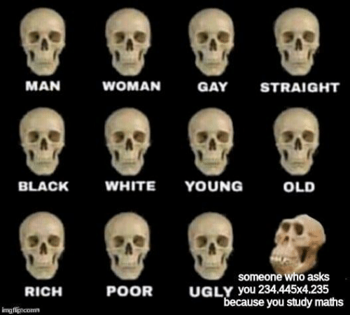 "Ugly, Black, and White: MAN  WOMAN  GAY  STRAIGHT  WHITE YOUNG  BLACK  OLD  someone who asks  UGLY you 234.445x4.235  ""because you study maths  POOR  RICH  imgflipncomm"