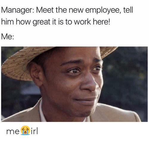 Work, How, and Him: Manager: Meet the new employee, tell  him how great it is to work here!  Me: me😭irl