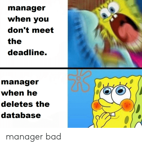 database: manager  when you  don't meet  the  deadline.  manager  when he  deletes the  database manager bad