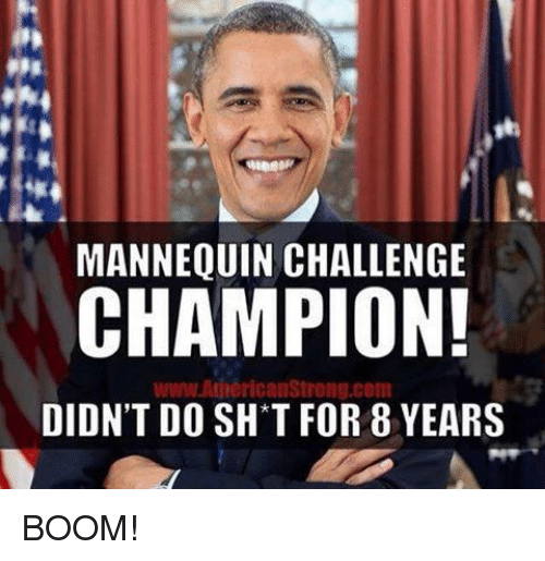 Mannequin Challenge: MANNEQUIN CHALLENGE  CHAMPION!  www AnnericanStrong.com  DIDN'T DO SH T FOR 8 YEARS BOOM!