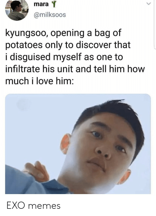 Love, Memes, and Discover: mara  @milksoos  kyungsoo, opening a bag  potatoes only to discover that  i disguised myself as one to  infiltrate his unit and tell him how  much i love him: EXO memes