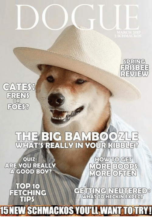 Dank, Good, and How To: MARCH 2017  PRING  FRISBEE  REVIE  GATES  FRENS  OR  FOES?  THE BIG BAMBOOZLE  WHAT'S REALLY IN YOUR KIBBLE?  OUIZ:  ARE YOU REALLY  A GOOD BOY?  HOW TO GE  MORE BOOPS  MORE OFTEN  TOP 10  FETCHING  TIPS  8  GETTING NEUTERED  WHAT TO HECKIN EXPECT  15 NEW SCHMACKOS YOU'LL WANT TOTRY!