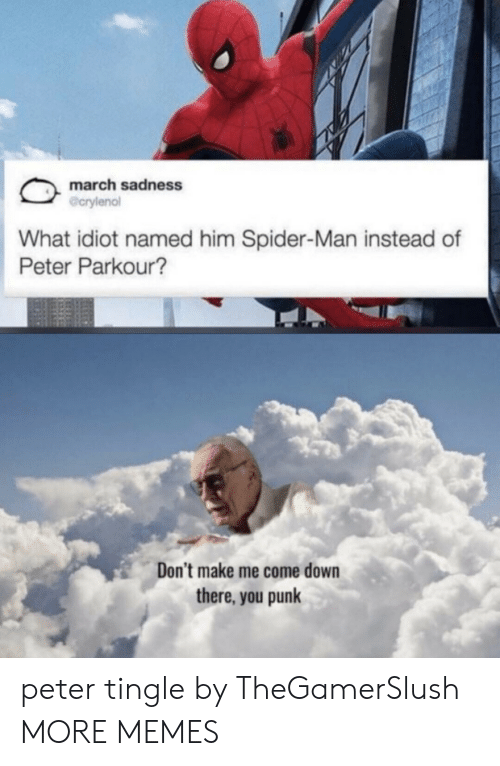 Dank, Memes, and Spider: march sadness  @crylenol  What idiot named him Spider-Man instead of  Peter Parkour?  Don't make me come down  there, you punk peter tingle by TheGamerSlush MORE MEMES