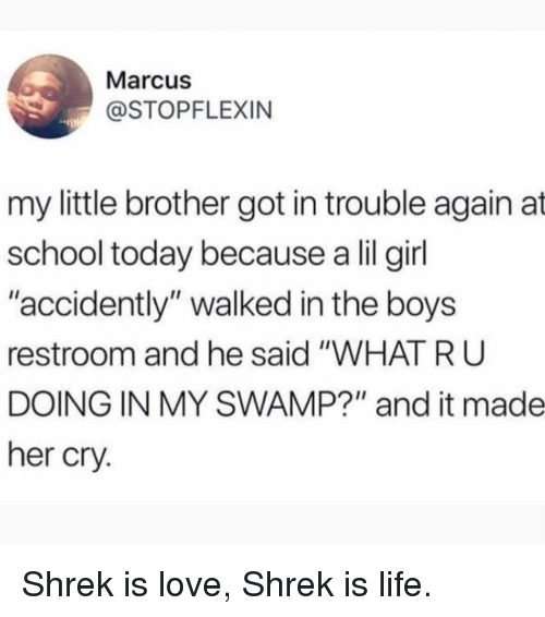 """shrek is love shrek is life: Marcus  @STOPFLEXIN  my little brother got in trouble again at  school today because a lil girl  """"accidently"""" walked in the boys  restroom and he said """"WHAT R U  DOING IN MY SWAMP?"""" and it made  her cry. Shrek is love, Shrek is life."""
