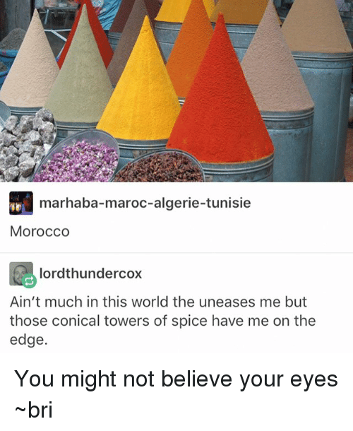 Memes, World, and Morocco: marhaba-maroc-algerie-tunisie  Morocco  lordthundercox  Ain't much in this world the uneases me but  those conical towers of spice have me on the  edge. You might not believe your eyes ~bri