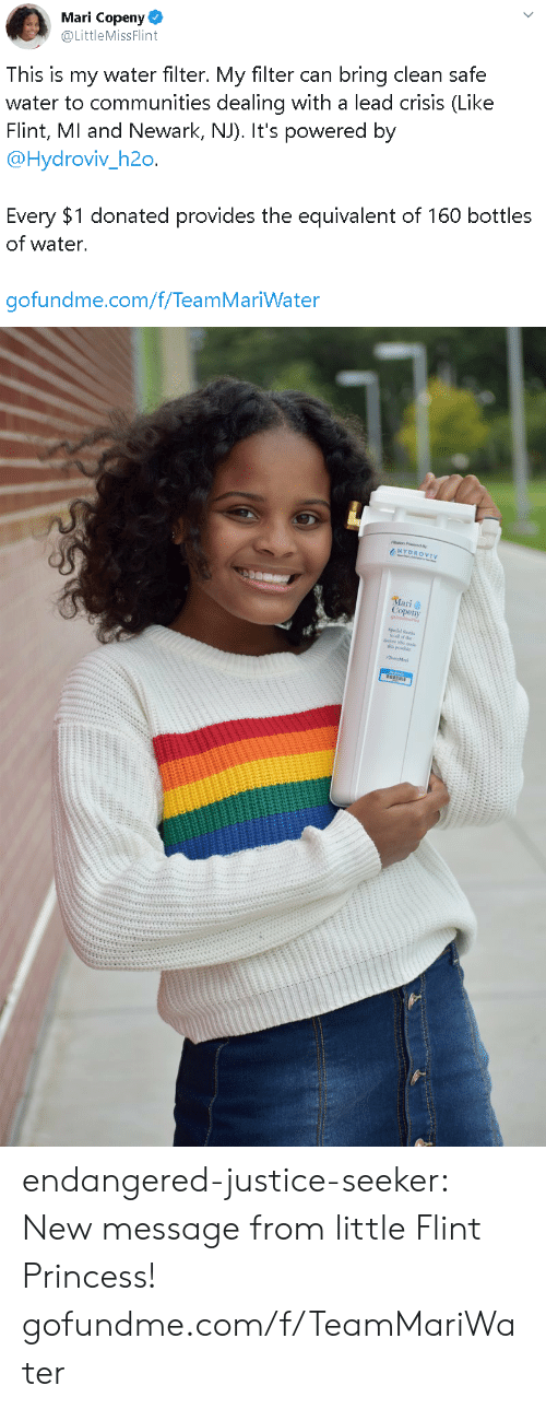 Target, Tumblr, and Blog: Mari Copeny  @LittleMissFlint  This is my water filter. My filter can bring clean safe  water to communities dealing with a lead crisis (Like  Flint, MI and Newark, NJ). It's powered by  @Hydroviv_h2o.  Every $1 donated provides the equivalent of 160 bottles  of water.  gofundme.com/f/TeamMariWater   HYDROVIV  Mari  Copeny endangered-justice-seeker:    New message from little Flint Princess!   gofundme.com/f/TeamMariWater