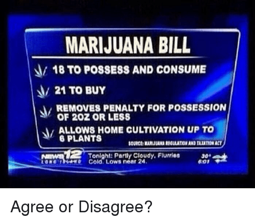 Memes, Home, and Marijuana: MARIJUANA BILL  18 TO POSSESS AND CONSUME  21 TO BUY  REMOVES PENALTY FOR POSSESSION  OF 202 OR LESS  ALOWS HOME CULTIVATION UP TO  6 PLANTS  Nmnd  Tonight: Partly Cloudy, Flurries  e Cold. Lows near 24  30  6.01 Agree or Disagree?