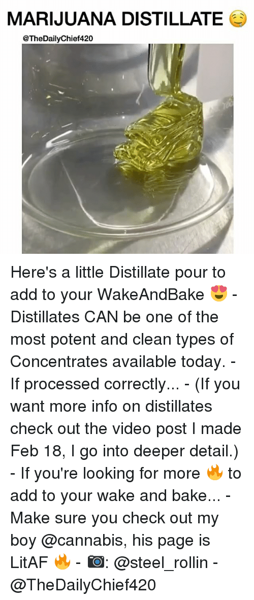 Memes, 🤖, and Page: MARIJUANA DISTILLATE  @TheDailyChief420 Here's a little Distillate pour to add to your WakeAndBake 😍 - Distillates CAN be one of the most potent and clean types of Concentrates available today. - If processed correctly... - (If you want more info on distillates check out the video post I made Feb 18, I go into deeper detail.) - If you're looking for more 🔥 to add to your wake and bake... - Make sure you check out my boy @cannabis, his page is LitAF 🔥 - 📷: @steel_rollin - @TheDailyChief420