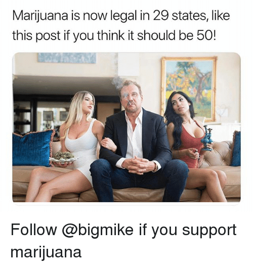 Marijuana, Trendy, and Think: Marijuana is now legal in 29 states, like  this post if you think it should be 50! Follow @bigmike if you support marijuana