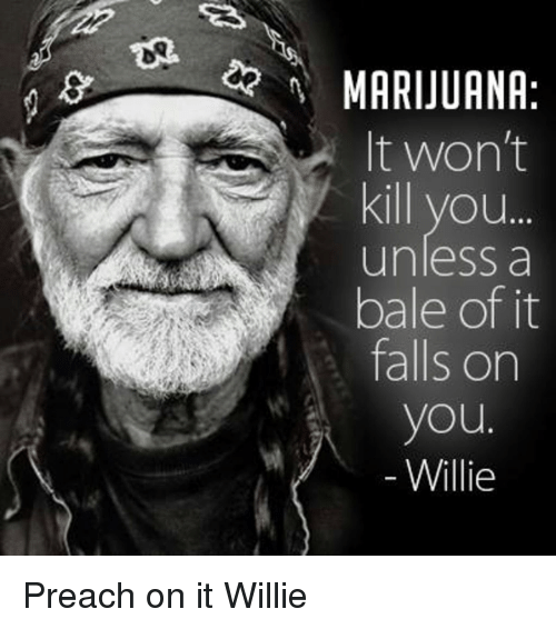 Memes, Preach, and 🤖: MARIJUANA  It won't  Kill you...  unless a  bale of it  falls on  you  Willie Preach on it Willie