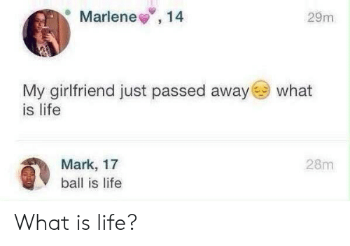 Ball Is Life, Life, and What Is: Marlene,14  29m  My girlfriend just passed away  is life  what  28m  Mark, 17  ball is life What is life?