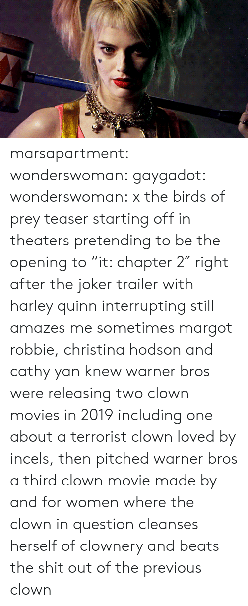 "Joker, Movies, and Shit: marsapartment:  wonderswoman: gaygadot:   wonderswoman:   x the birds of prey teaser starting off in theaters pretending to be the opening to ""it: chapter 2″ right after the joker trailer with harley quinn interrupting still amazes me sometimes    margot robbie, christina hodson and cathy yan knew warner bros were releasing two clown movies in 2019 including one about a terrorist clown loved by incels, then pitched warner bros a third clown movie made by and for women where the clown in question cleanses herself of clownery and beats the shit out of the previous clown"