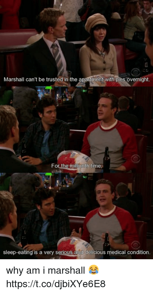Memes, Time, and Sleep: Marshall can't be trusted in the apantment with pies overnight  For the millionth time  sleep-eating is a very serious and delicious medical condition. why am i marshall 😂 https://t.co/djbiXYe6E8