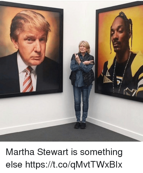 Martha Stewart, Girl Memes, and Something Else: Martha Stewart is something else https://t.co/qMvtTWxBIx