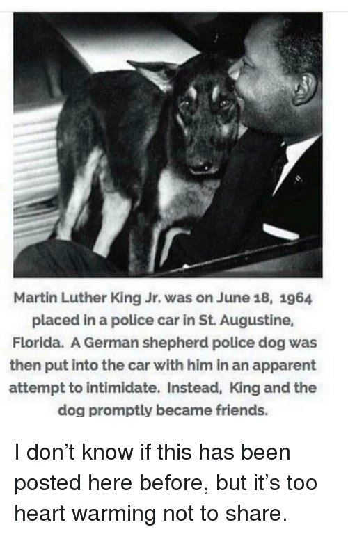 Martin Luther King Jr.: Martin Luther King Jr. was on June 18, 1964  placed in a police car in St. Augustine,  Florida. A German shepherd police dog was  then put into the car with him in an apparent  attempt to intimidate. Instead, King and the  dog promptly became friends. I don't know if this has been posted here before, but it's too heart warming not to share.