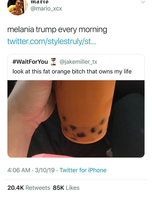 Melania: marto  @mario_xcx  melania trump every morning  twitter.com/stylestruly/st...  #WaitForYou-@jakemiler_tx  look at this fat orange bitch that owns my life  4:06 AM- 3/10/19 Twitter for iPhone  20.4K Retweets 85K Likes