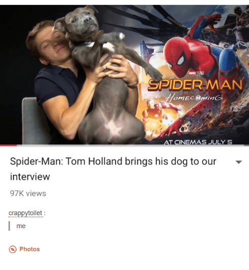 Dank, Spider, and SpiderMan: MARVE  SPIDER MAN  AT CINEMAS JULY 5  Spider-Man: Tom Holland brings his dog to our  interview  97K views  crappytoilet  me  Photos