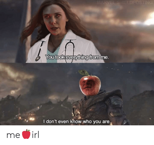 Marvel, Who, and You: MARVEL SHIELDPOSTING  You took everything from me.  I don't even know who you are. me🍎irl
