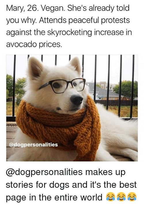 Dogs, Memes, and Vegan: Mary, 26. Vegan. She's already told  you why. Attends peaceful protests  against the skyrocketing increase in  avocado prices.  @dogpersonalities @dogpersonalities makes up stories for dogs and it's the best page in the entire world 😂😂😂