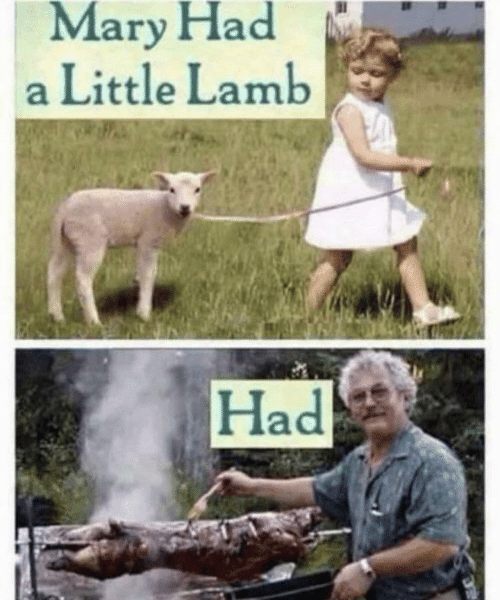 A Little: Mary Had  a Little Lamb  Had