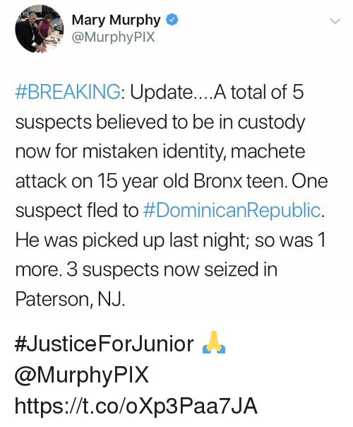 Old, Mistaken, and Machete: Mary Murphy  @MurphyPIX  #BREAKING: Update A total of 5  suspects believed to be in custody  now for mistaken identity, machete  attack on 15 year old Bronx teen. One  suspect fled to #DominicanRepublic.  He was picked up last night; so was1  more. 3 suspects now seized in  Paterson, NJ. #JusticeForJunior 🙏 @MurphyPIX https://t.co/oXp3Paa7JA