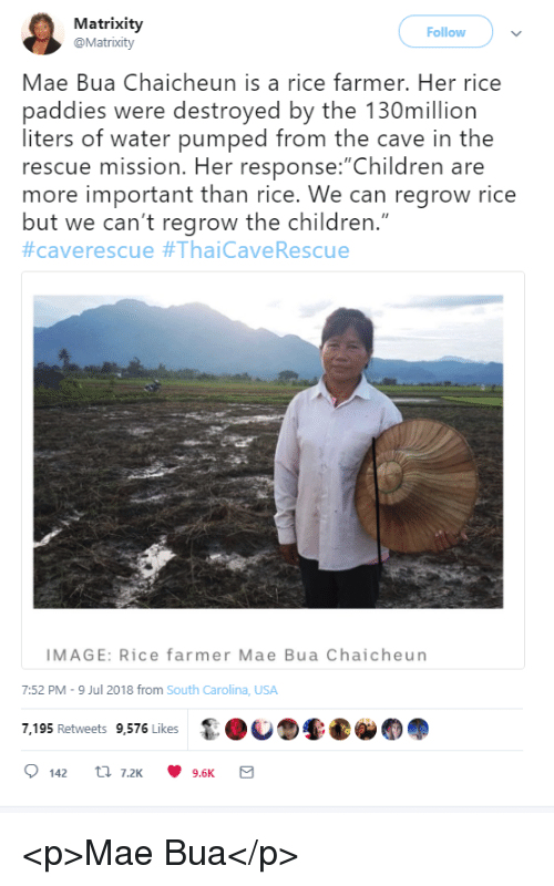 "Children, Image, and Water: Matrixity  @Matrixity  Follow  Mae Bua Chaicheun is a rice farmer. Her rice  paddies were destroyed by the 130million  liters of water pumped from the cave in the  rescue mission. Her response: Children are  more important than rice. We can regrow rice  but we can't regrow the children.""  #caverescue #ThaiCaveRescue  IMAGE: Rice farmer Mae Bua Chaicheun  7:52 PM-9 Jul 2018 from South Carolina, USA  7,195 Retweets 9,576 Likes <p>Mae Bua</p>"