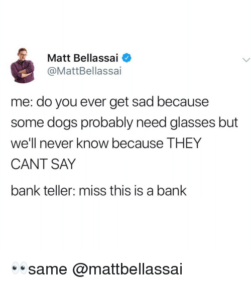 Dogs, Memes, and Bank: Matt Bellassai  @MattBellassai  me: do you ever get sad because  some dogs probably need glasses but  we'll never know because THEY  CANT SAY  bank teller: miss this is a bank 👀same @mattbellassai