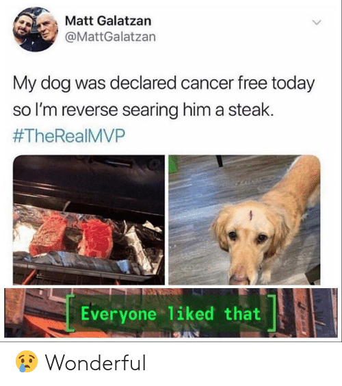 Cancer, Free, and Today: Matt Galatzan  @MattGalatzan  My dog was declared cancer free today  so I'm reverse searing him a steak.  #TheRealMVP  Everyone liked that 😢 Wonderful
