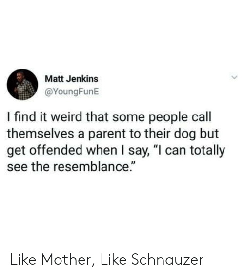 """Schnauzer: Matt Jenkins  @YoungFunE  I find it weird that some people call  themselves a parent to their dog but  get offended when I say, """"l can totally  see the resemblance."""" Like Mother, Like Schnauzer"""