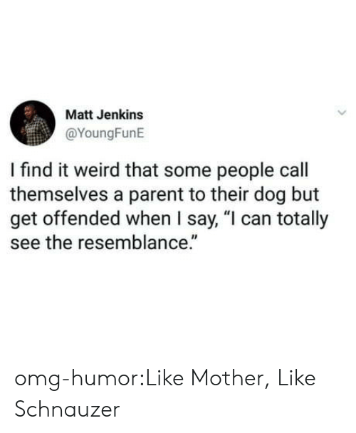 """Schnauzer: Matt Jenkins  @YoungFunE  I find it weird that some people call  themselves a parent to their dog but  get offended when I say, """"l can totally  see the resemblance."""" omg-humor:Like Mother, Like Schnauzer"""