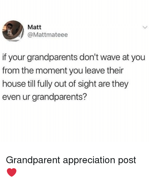 Memes, House, and Out of Sight: Matt  @Mattmateee  if your grandparents don't wave at you  from the moment you leave their  house till fully out of sight are they  even ur grandparents? Grandparent appreciation post ❤