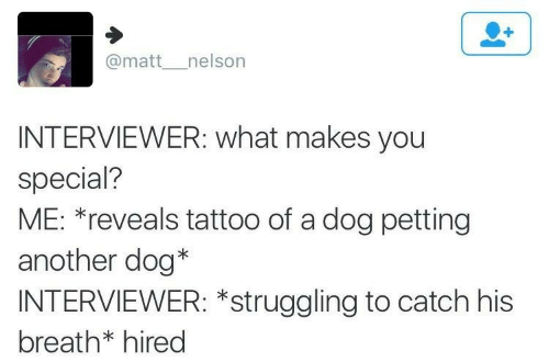 special: @matt__nelson  INTERVIEWER: what makes you  special?  ME: *reveals tattoo of a dog petting  another dog*  INTERVIEWER: *struggling to catch his  breath* hired