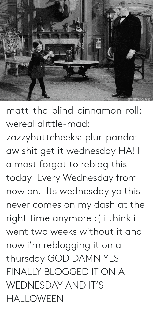 Its Wednesday: matt-the-blind-cinnamon-roll:  wereallalittle-mad:  zazzybuttcheeks:  plur-panda:      aw shit get it wednesday  HA! I almost forgot to reblog this today  Every Wednesday from now on.  Its wednesday yo   this never comes on my dash at the right time anymore :( i think i went two weeks without it and now i'm reblogging it on a thursday  GOD DAMN YES FINALLY BLOGGED IT ON A WEDNESDAY  AND IT'S HALLOWEEN