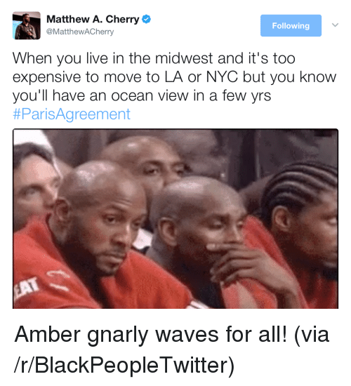 Blackpeopletwitter, Waves, and Live: Matthew A. Cherry  @MatthewACherry  Following  When you live in the midwest and it's too  expensive to move to LA or NYC but you know  you'll have an ocean view in a few yrs  <p>Amber gnarly waves for all! (via /r/BlackPeopleTwitter)</p>