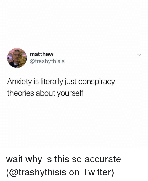 Memes, Twitter, and Anxiety: matthew  @trashythisis  Anxiety is literally just conspiracy  theories about yourself wait why is this so accurate (@trashythisis on Twitter)
