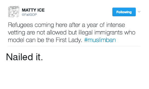 First Ladies: MATTY ICE  Following  @FailGOP  Refugees coming here after a year of intense  vetting are not allowed but illegal immigrants who  model can be the First Lady. Nailed it.