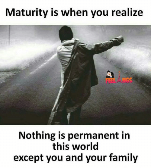 Family, Memes, and World: Maturity is when you realize  Nothing is permanent in  this world  except you and your family