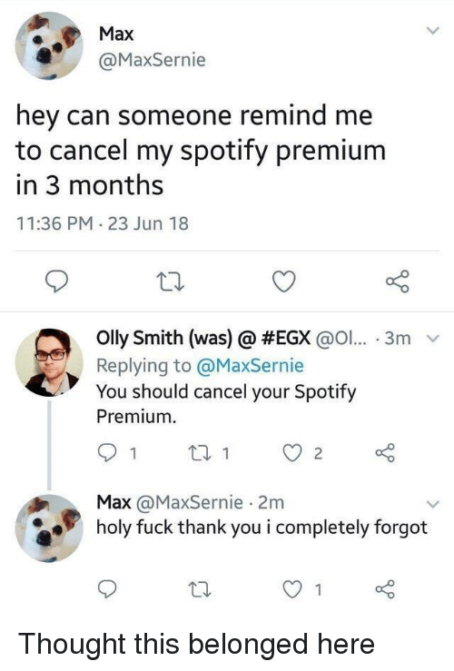 Spotify, Thank You, and Fuck: Max  @MaxSernie  hey can someone remind me  to cancel my spotify premium  in 3 months  11:36 PM 23 Jun 18  olly Smith (was) @ #EGX @ol...-3m  Replying to @MaxSernie  You should cancel your Spotify  Premium  Max @MaxSernie 2m  holy fuck thank you i completely forgot Thought this belonged here